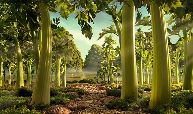 03-Food-Landscapes-Celery-Forest