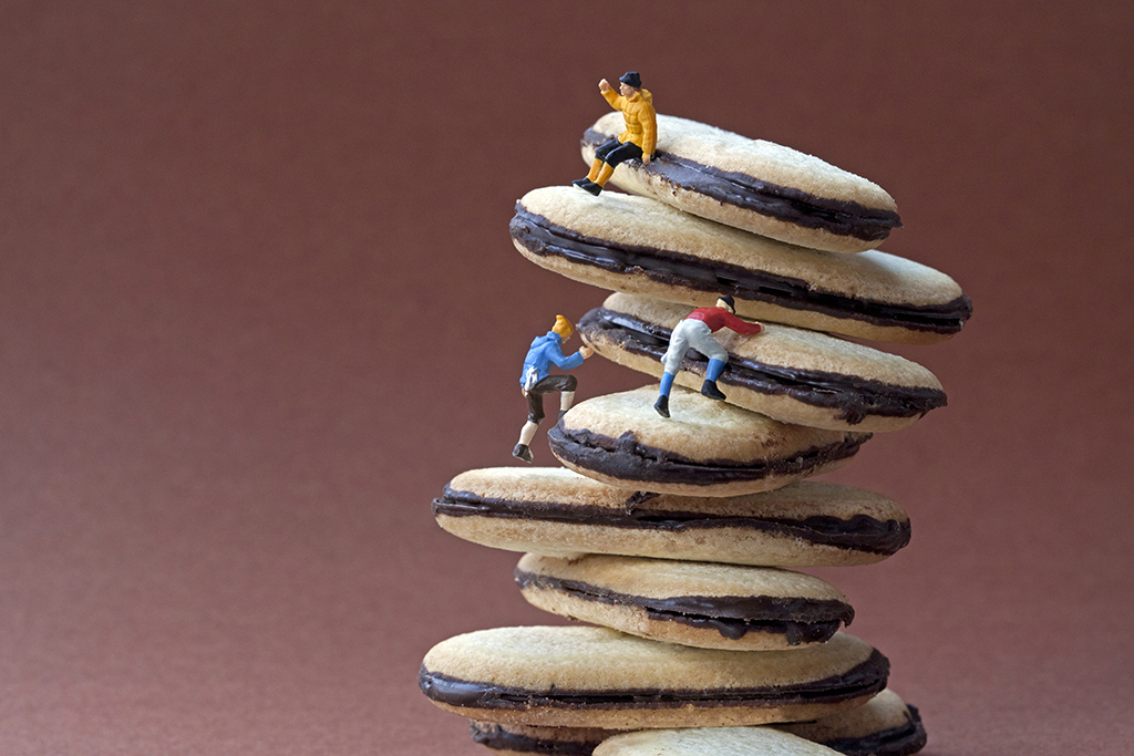 cookie+climbers+COPYRIGHTED+IMAGE+Please+don't+repost+without+permission