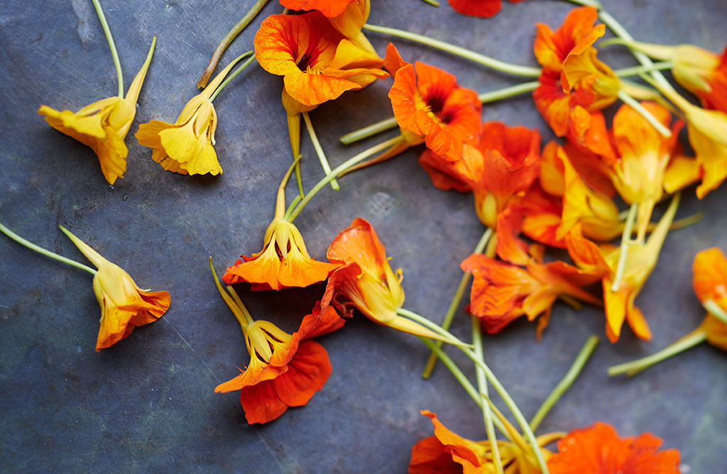 flowersDPS